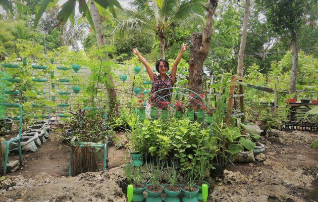 SUGBUsog Containerized Gardening Contest